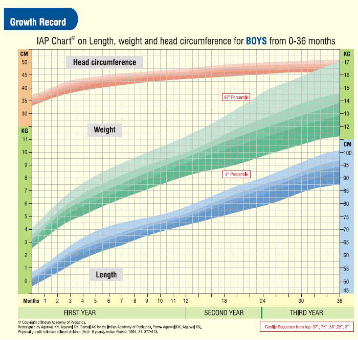 Boy's Growth Chart